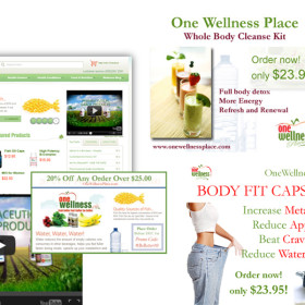 Integrated Marketing (OneWellnessPlace.com)