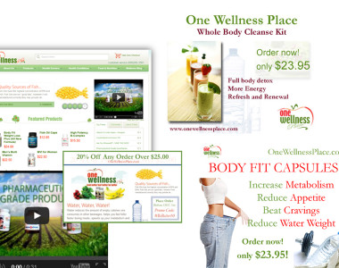 Integrated Marketing (OneWellnessPlace.com)